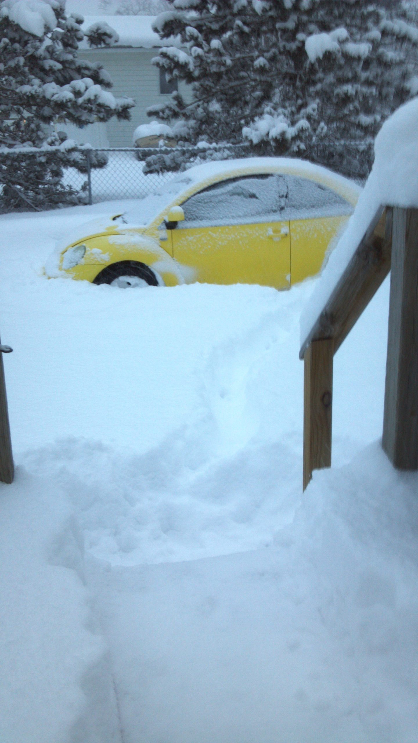 Read more about the article It Snowed a Little Today…